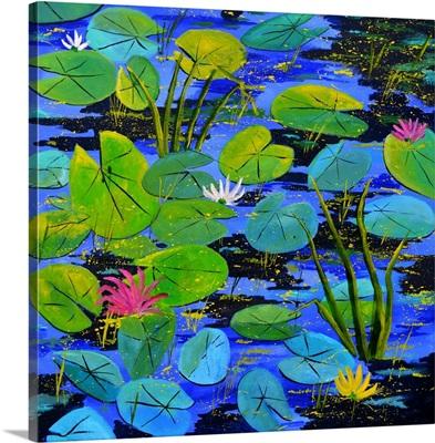 Waterlilies 8861