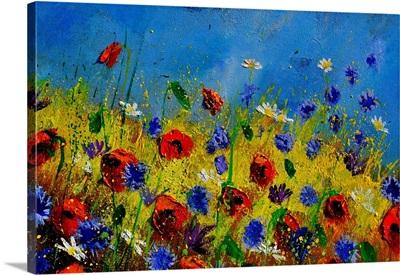 Wild Flowers 119001