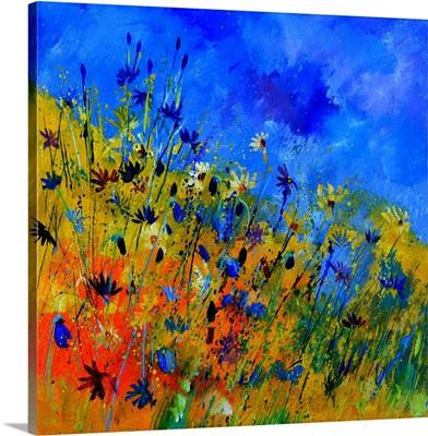 Wild Flowers 36363