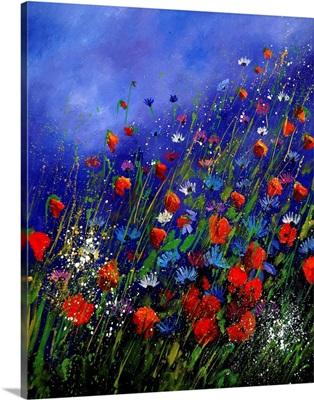 Wild Flowers 78