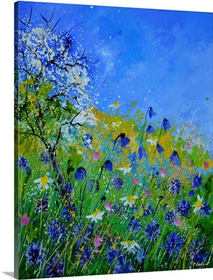 Wildflowers 459140