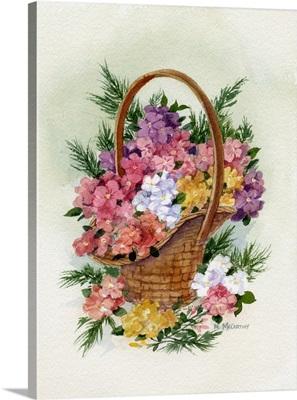 Basket of Phlox
