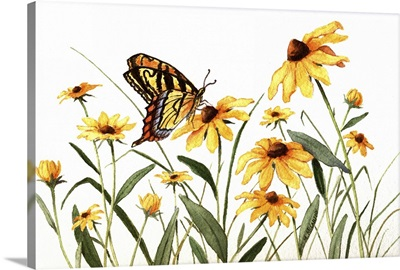 Butterfly And Black Eyed Susans