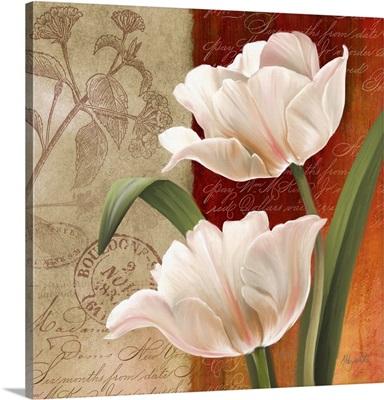 French Tulips I