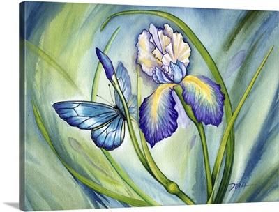 Lovely Iris