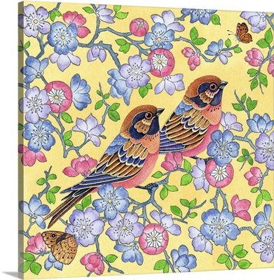May Sparrows