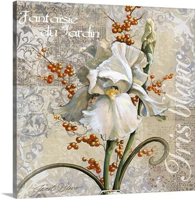 White Iris Fantasy