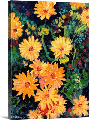 Golden Chrysanthemums