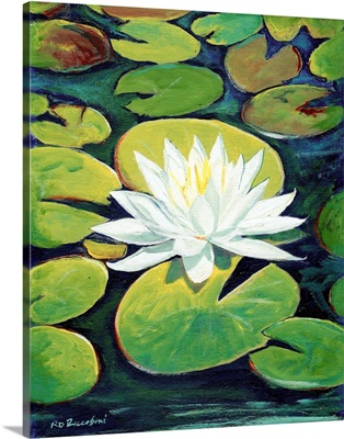 Water Lily Flower painting by