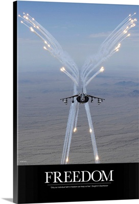 Air Force Poster: Freedom Can Keep Us Free