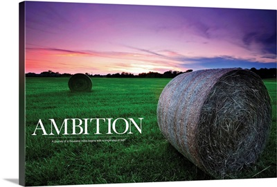 Ambition: A Journey of a thousand miles begins with a single step of faith