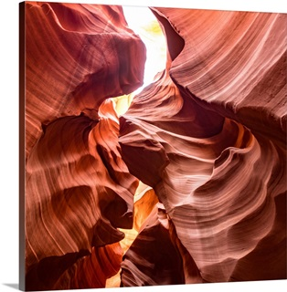 Curves Wall Art Canvas Prints Curves Panoramic Photos Posters Photography Wall Art Framed Prints More Great Big Canvas