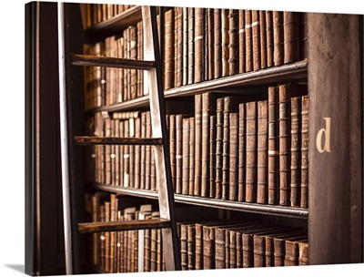 Book Shelves and Ladder, Trinity College Library, Dublin, Ireland, UK