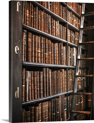 Book Shelves and Ladder, Trinity College Library, Dublin, Ireland, UK - Vertical