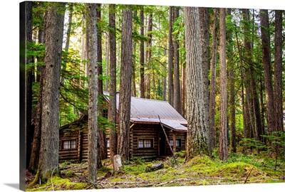 Cabin In The Woods, Mount Rainier National Park, Washington