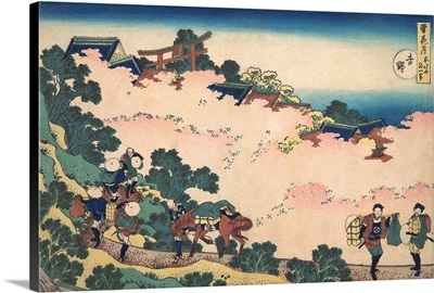Cherry Blossoms at Yoshino, from the series Snow, Moon, and Flowers