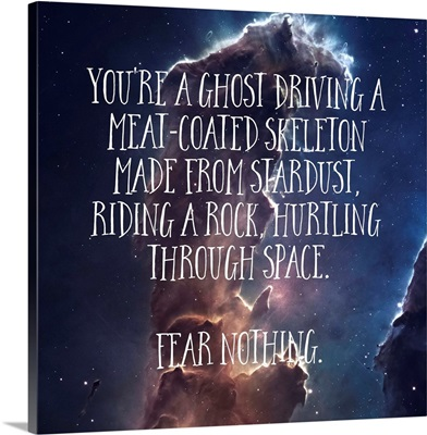 Fear Nothing - Sentiment