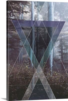 Forest Prisms