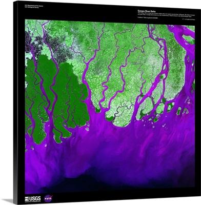 Ganges River Delta - USGS Earth as Art