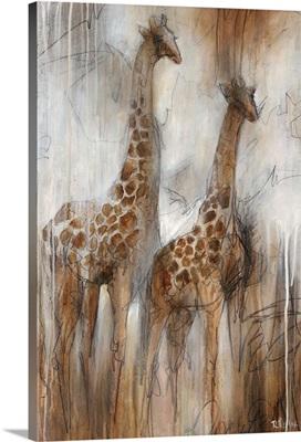 Giraffe Study
