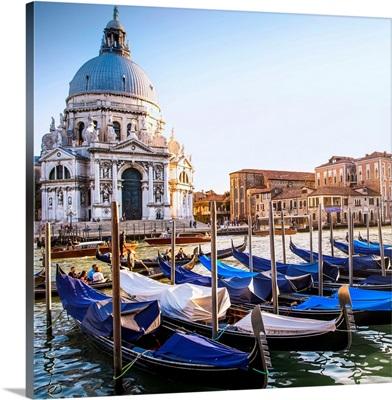 Gondolas in Front of Santa Maria della Salute, Venice, Italy, Europe - Square