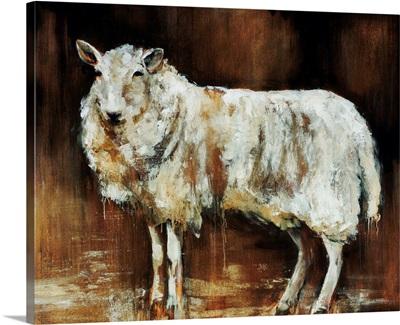 Have Ewe Any Wool