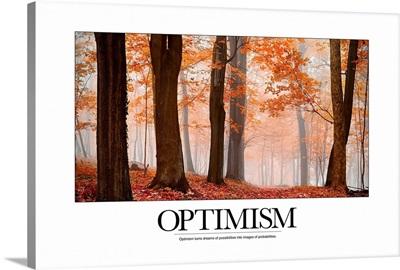 Inspirational Motivational Poster: Optimism
