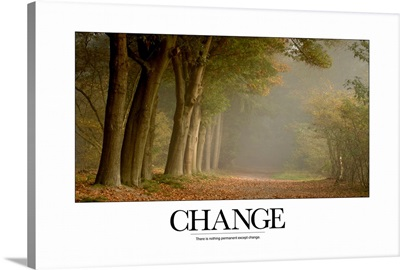 Inspirational Motivational Poster: There is nothing permanent except change