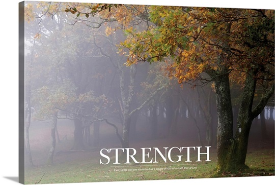Inspirational Poster Every Great Oak Tree Started Out As
