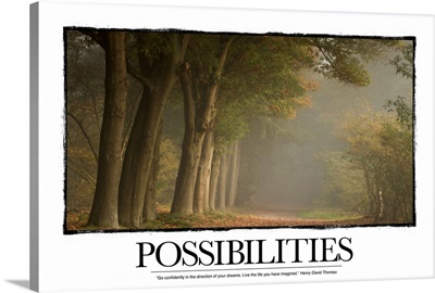Inspirational Poster: Possibilities: Go confidently in the direction of your dreams.