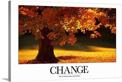 Inspirational Poster: There is nothing permanent except change