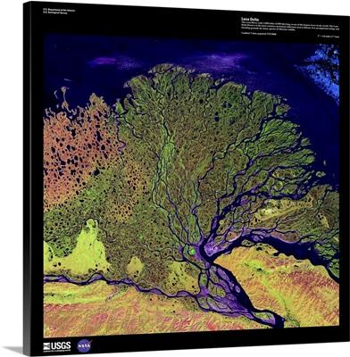 Lena Delta - USGS Earth as Art