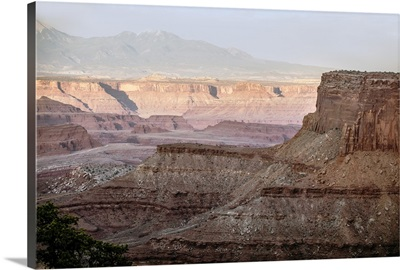 Light from the setting sun on the mesas at Canyonlands National Park, Utah