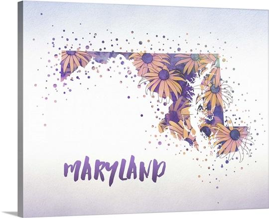 maryland state flower black eyed susan wall art canvas prints
