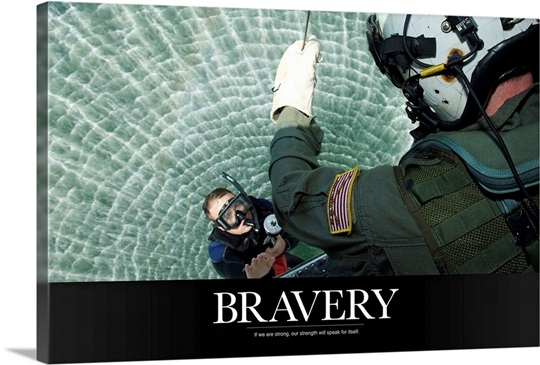 Motivational Poster: Bravery