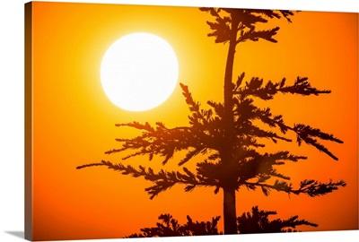 Orange Sunset At Crater Lake, Oregon