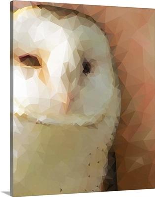 Owl - Low Poly
