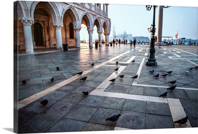Piazza San Marco (St. Mark's Square) Pigeons, Venice, Italy, Europe