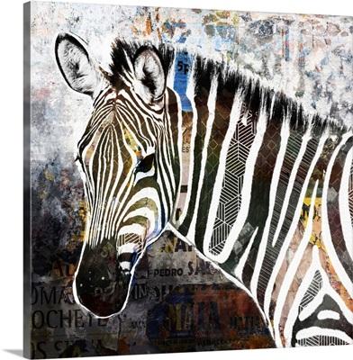 Pop Art - Zebra