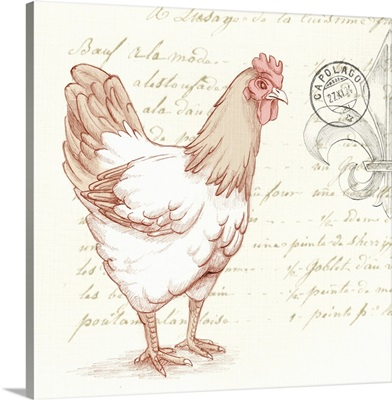 Red Hen in the French Countryside