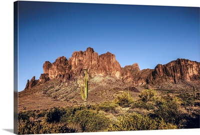 Saguaro Cactus And Superstition Mountain In Phoenix, Arizona