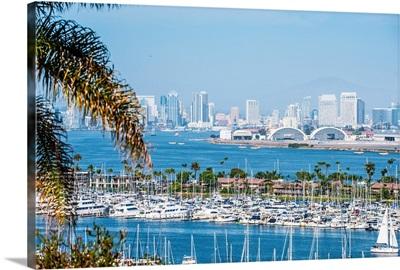 San Diego Skyline and Marina, California - Panoramic