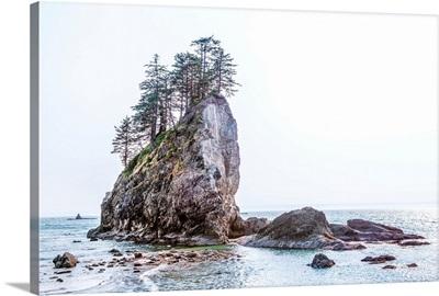 Sea Stacks At Second Beach, Olympic National Park, Washington