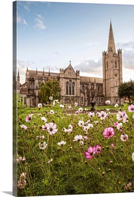 St Patrick's Cathedral and Flowers, Dublin, Ireland