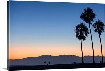 Sunset On Palm Trees And San Gabriel Mountains, Venice Beach, California