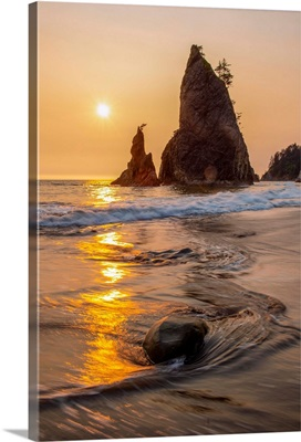 Sunset On Sea Stacks, Rialto Beach, Olympic National Park, Washington