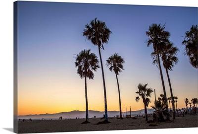 Sunset On Venice Beach, California