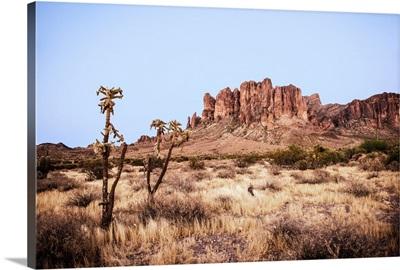 Superstition Mountain, Phoenix, Arizona