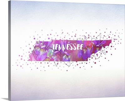 Tennessee State Flower (Iris)