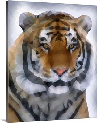 Tiger - Low Poly